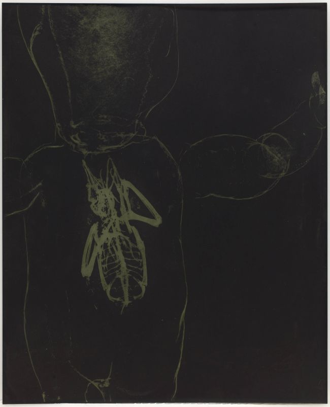 Click the image for a view of: Rosemarie Marriott. gefladder. Polymer etching plate