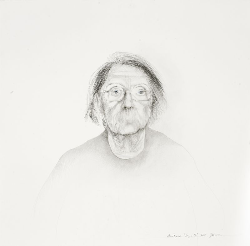 Click the image for a view of: Mouthpiece. Saying No. 2011. Pencil and coloured pencil on paper. 780X745mm